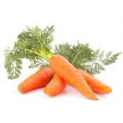 Моркови (24)