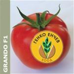 Домати Грандо F1 ( Grando F1 ) от производител May seed