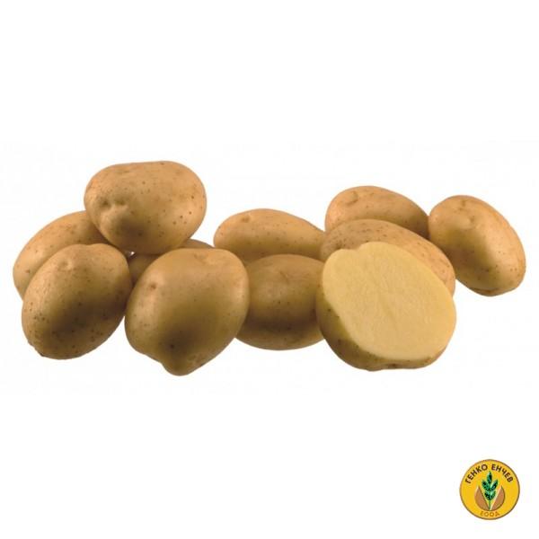 Картофи Санте ( Sante ) от производител Agrico