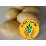 Картофи Агата ( Agata ) от производител Agrico