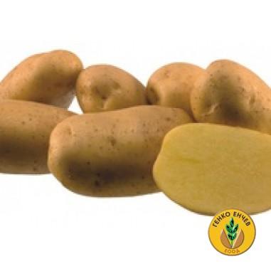 Картофи Агрия ( Agria )