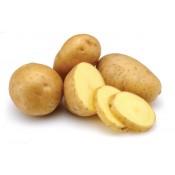 Късни картофи (3)