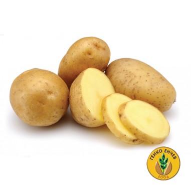 Късни картофи