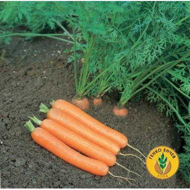 Моркови Дордоне F1 ( Dordone F1 )