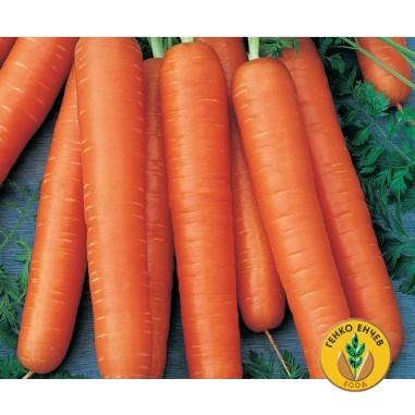 Моркови Тушон ( Tushon )