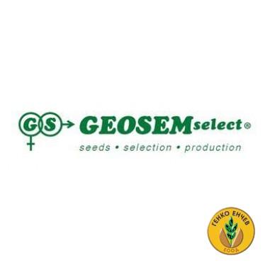 Geosem